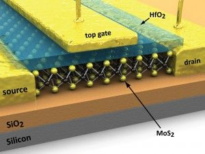 MoS2 FET with local gate - 5_0d with labels 2