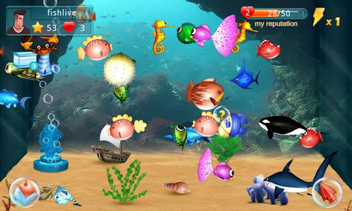 Fish Live Graphics