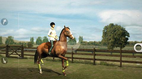 My Horse Graphics
