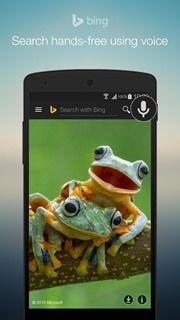 Bing 1