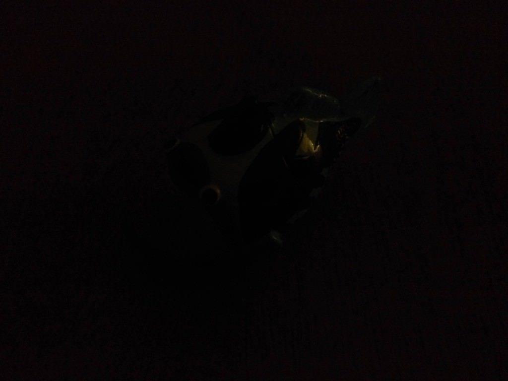 Lenovo Vibe Shot_camera review_low light