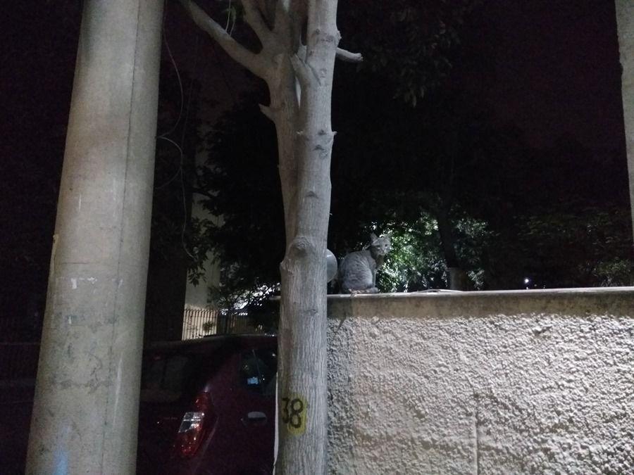Xiaomi-Redmi-Note-3-camera-sample-night